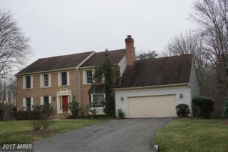 6614 White Post Road, Centreville, VA 20121 (#FX9853250) :: Pearson Smith Realty