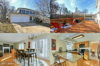 14611 Meeting Camp Road, Centreville, VA 20121 (#FX9853660) :: Pearson Smith Realty