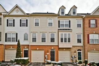 7589 Great Swan Court, Alexandria, VA 22306 (#FX9854078) :: LoCoMusings