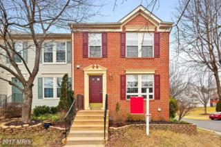 14328 Papilion Way, Centreville, VA 20121 (#FX9854763) :: Pearson Smith Realty