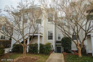 2830 Yarling Court #2830, Falls Church, VA 22042 (#FX9855103) :: Pearson Smith Realty