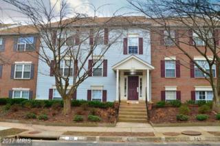 12103 Green Leaf Court #102, Fairfax, VA 22033 (#FX9855819) :: LoCoMusings