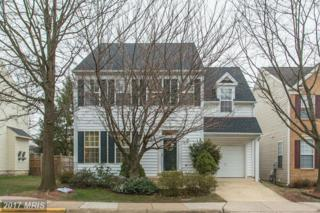 6023 Mcalester Way, Centreville, VA 20121 (#FX9856682) :: Pearson Smith Realty