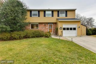 2624 Litchfield Drive, Herndon, VA 20171 (#FX9857705) :: Pearson Smith Realty