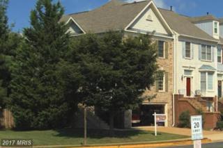 5814 Appleford Drive, Alexandria, VA 22315 (#FX9857997) :: Pearson Smith Realty