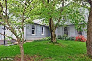 15345 Oakmere Place, Centreville, VA 20120 (#FX9858238) :: Pearson Smith Realty