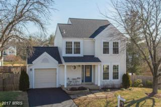 5517 Sequoia Farms Drive, Centreville, VA 20120 (#FX9858632) :: Pearson Smith Realty