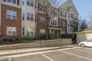 6500 Tayack Place #301, Alexandria, VA 22312 (#FX9858816) :: Pearson Smith Realty