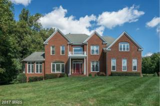 11308 Antrim Court, Great Falls, VA 22066 (#FX9860987) :: Pearson Smith Realty