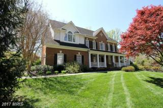 1620 Forest Lane, Mclean, VA 22101 (#FX9861107) :: Pearson Smith Realty