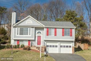 14114 Wood Rock Way, Centreville, VA 20121 (#FX9861224) :: Pearson Smith Realty