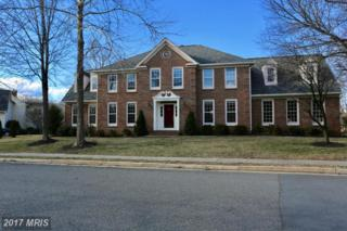 15443 Eagle Tavern Lane, Centreville, VA 20120 (#FX9861505) :: LoCoMusings