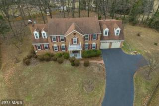 1004 Coralberry Court, Great Falls, VA 22066 (#FX9861951) :: Pearson Smith Realty