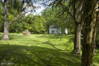 Newman Road, Clifton, VA 20124 (#FX9862080) :: LoCoMusings