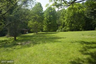 Newman Road, Clifton, VA 20124 (#FX9862095) :: Pearson Smith Realty