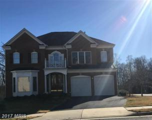 13667 Sweet Woodruff Lane, Centreville, VA 20120 (#FX9863285) :: Pearson Smith Realty