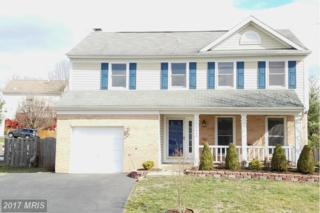 6495 Palisades Drive, Centreville, VA 20121 (#FX9863348) :: Pearson Smith Realty