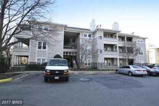 12005 Taliesin Place #16, Reston, VA 20190 (#FX9863586) :: LoCoMusings