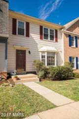 7412 Spring Tree Drive, Springfield, VA 22153 (#FX9863983) :: Pearson Smith Realty