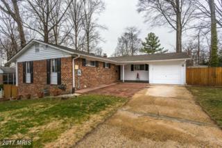 5508 Kempton Drive, Springfield, VA 22151 (#FX9864026) :: Pearson Smith Realty
