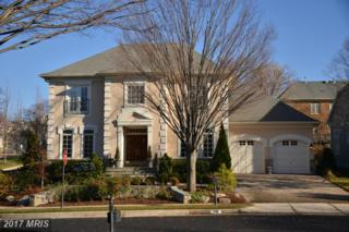 7411 Old Maple Square, Mclean, VA 22102 (#FX9864519) :: Eric Stewart Group