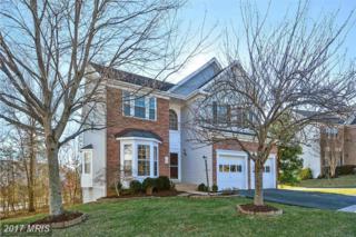6414 Emerald Green Court, Centreville, VA 20121 (#FX9864718) :: Pearson Smith Realty