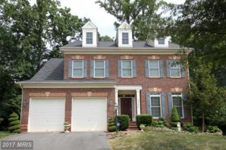 5350 Brandon Ridge Way, Fairfax, VA 22032 (#FX9864767) :: Pearson Smith Realty