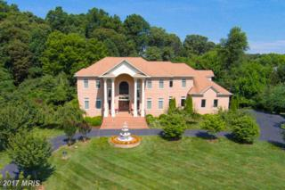 2952 Bonds Ridge Court, Oakton, VA 22124 (#FX9865698) :: Pearson Smith Realty