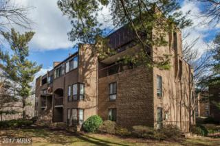 11248 Chestnut Grove Square #352, Reston, VA 20190 (#FX9867758) :: Pearson Smith Realty