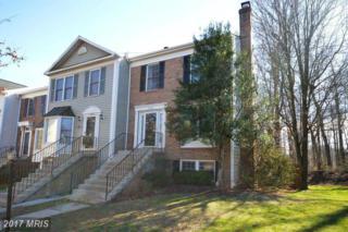 14500 Battery Ridge Lane, Centreville, VA 20120 (#FX9867835) :: Pearson Smith Realty