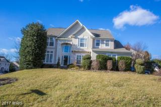 14526 Meeting Camp Road, Centreville, VA 20121 (#FX9868475) :: Pearson Smith Realty