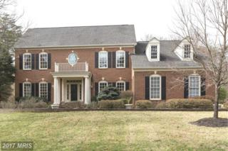 6316 Fairfax National Way, Centreville, VA 20120 (#FX9870190) :: Pearson Smith Realty