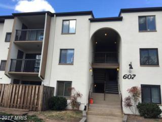 607 Center Street 101BLD, Herndon, VA 20170 (#FX9870195) :: Pearson Smith Realty