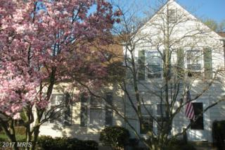 6376 Chimney Wood Court, Alexandria, VA 22306 (#FX9872864) :: LoCoMusings