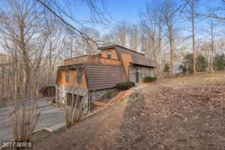 10896 Woodleaf Lane, Great Falls, VA 22066 (#FX9874396) :: LoCoMusings