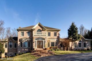 11608 Brockman Lane, Great Falls, VA 22066 (#FX9874779) :: Pearson Smith Realty
