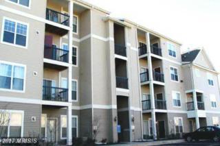 13363-G Connor Drive G, Centreville, VA 20120 (#FX9877513) :: LoCoMusings