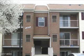 14805 Rydell Road #203, Centreville, VA 20121 (#FX9879106) :: LoCoMusings