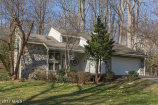 13437 Compton Road, Clifton, VA 20124 (#FX9879605) :: LoCoMusings