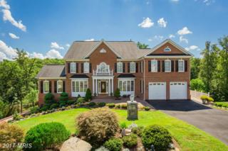 9335 Elkhorne Run Court, Lorton, VA 22079 (#FX9880220) :: LoCoMusings