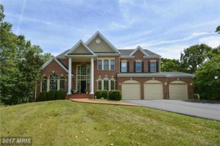 5436 Chandley Farm Circle, Centreville, VA 20120 (#FX9880938) :: LoCoMusings