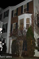 13523 Stargazer Terrace, Centreville, VA 20120 (#FX9881612) :: LoCoMusings