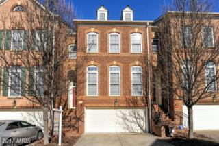 7130 Point Replete Circle, Fort Belvoir, VA 22060 (#FX9882434) :: Pearson Smith Realty