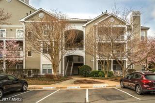 1705 Lake Shore Crest Drive #13, Reston, VA 20190 (#FX9883444) :: LoCoMusings
