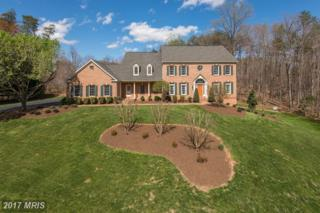 13704 Balmoral Greens Avenue, Clifton, VA 20124 (#FX9883540) :: LoCoMusings