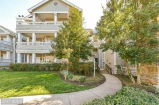 13058 Autumn Woods Way #103, Fairfax, VA 22033 (#FX9883769) :: LoCoMusings