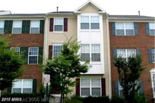 14102 Gabrielle Way, Centreville, VA 20121 (#FX9885536) :: LoCoMusings