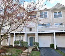 14462 Glencrest Circle #45, Centreville, VA 20120 (#FX9885539) :: LoCoMusings