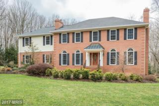 11408 Valley Stream Court, Great Falls, VA 22066 (#FX9885550) :: Pearson Smith Realty