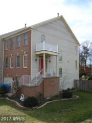 6300 Gun Cap Court, Centreville, VA 20121 (#FX9886492) :: LoCoMusings